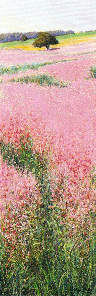 Angiolo Volpe Francia Provenza Sauge olio su tela